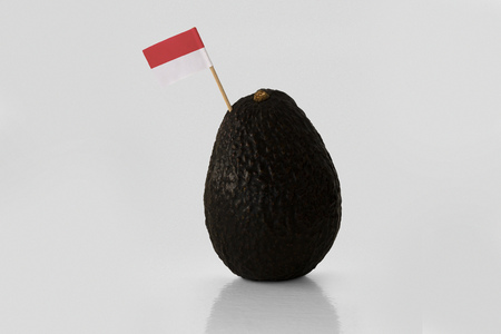 Isolated avocado with Indonesian flag. Imagens