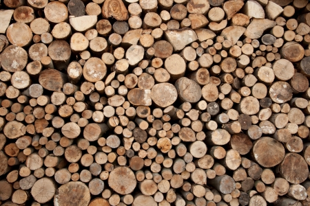 cuted wood stored for wintertime photo