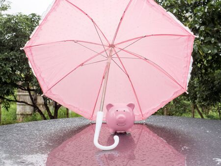Pink Piggy bank with umbrella On a rainy day Saving money for any storm problem will come concept for finance, insurance, protection, investment or banking.