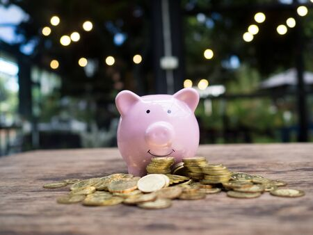 Pink piggy bank with 