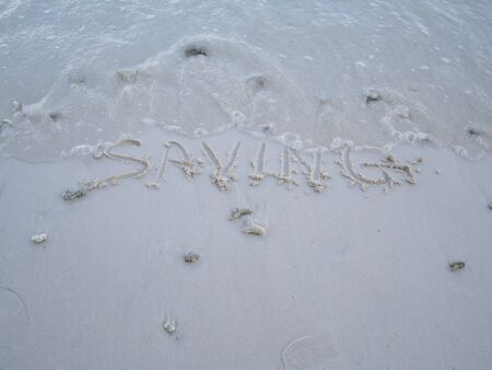 The letters saving were written on the sand with natural beauty.