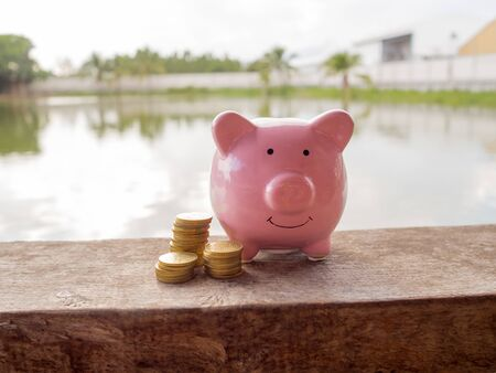 Pink piggy bank standing on wooden with coins pile and water background, Saving money for future plan and retirement fund concept.