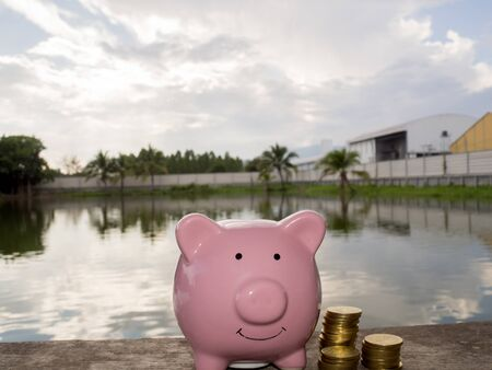 Pink piggy bank standing on wooden with coins pile and water backgeound, Saving money for future plan and retirement fund concept. Imagens