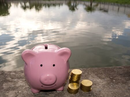 Pink piggy bank standing on wooden with coins pile and water backgeound, Saving money for future plan and retirement fund concept.