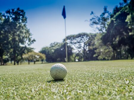 Photo of white golf ball on grass with blue sky background. Reklamní fotografie