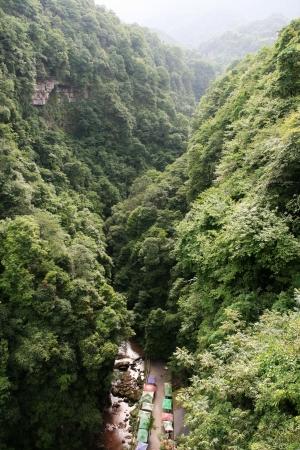 중국의 사천 지방에있는 Bifengxia의 풍경