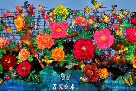 the lantern show in zigong of chengdu inchina in 2014