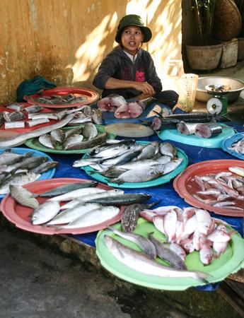 fish vendor: Fish vendor in vietnam Editorial