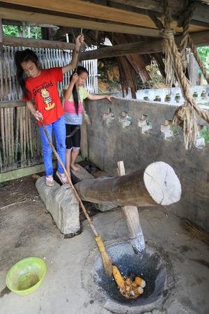 miao: the girls breaking corn in basha miao village,guinzhou,china
