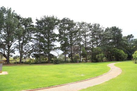 melbourne australia: vitoria state rose garden in melbourne,australia