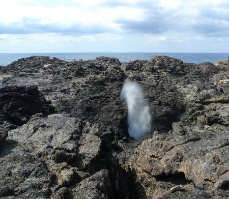 kiama: kiama blowwhole point in australia