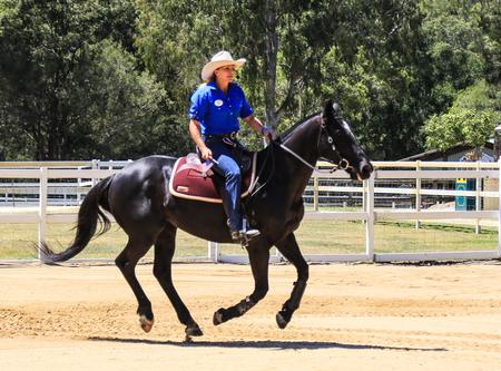 aussie: equestrian performance in paradise country aussie farm,gold coast,australia Editorial