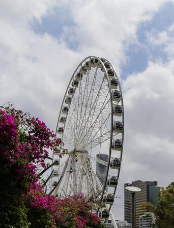 ferriswheel: Ferriswheel in briscane,australia Editorial