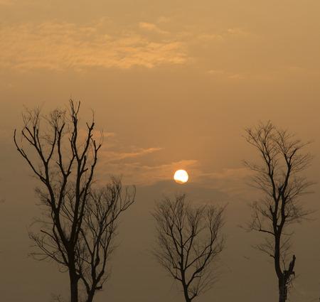 chengdu: sunset in chengdu,china Stock Photo