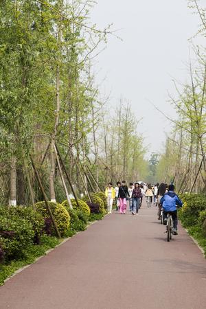 chengdu: the landscape in a park,chengdu,china Editorial