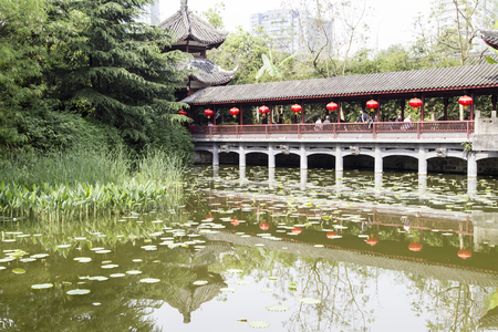 lotus lantern: the landscape in a park,chengdu,china Editorial