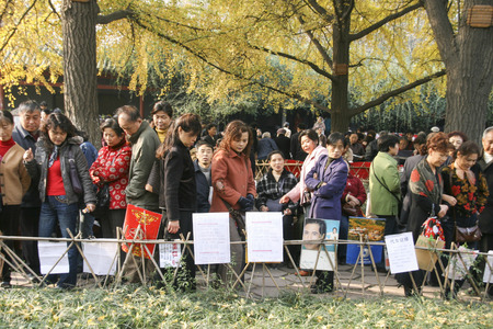 Blind Date: blind date in a park,chengdu,china