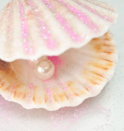 beautiful,   conch,  gem,  jewel,  macro, pearl,  seashell, shell, shiny, sphere, surf,  white, Stock Photo - 5799271