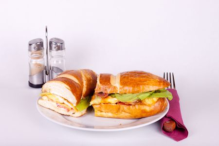 delicius sandwich on plate with set for dining  photo