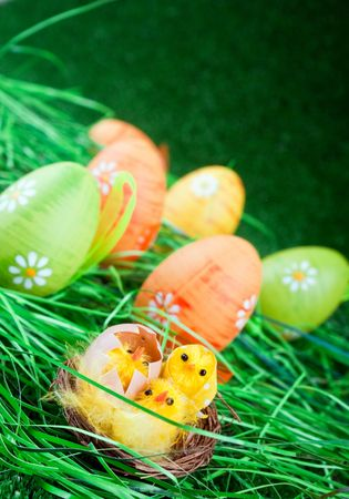 easter eggs and yellow chicken in grass photo