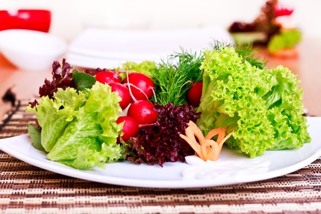 decorated vegeterian food on plate  - salad, radish, carrot Stock Photo - 7142785