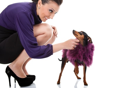 sexy woman plying with her fancy dog on white background photo