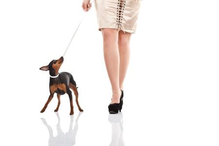 women and dog walking, woman photo