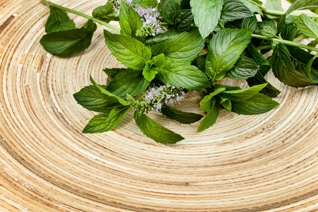 spearmint: fresh green mint on  a wooden plate Stock Photo