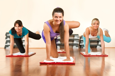 young and attractive women  group doing fitness exercises photo
