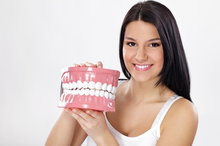 denture: Smiling young woman holding plastic big model of jaws with teeth