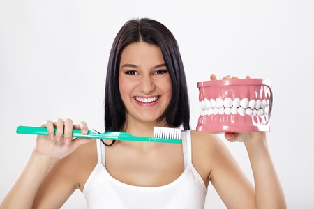 oral care:  Smiling girl holding model of teeth and toothbrush