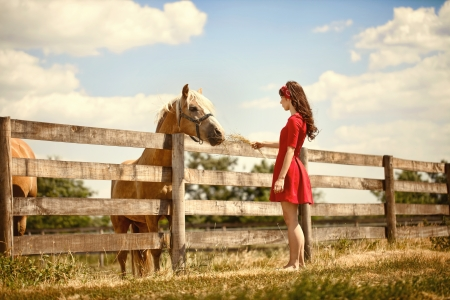 sundress:  Beautiful young woman on the farm with her horse.