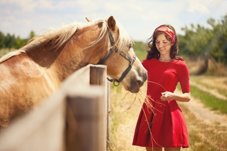 Beautiful girl feeding  her horse. photo