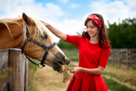 young smiling girl stroked  her horse, friendship photo