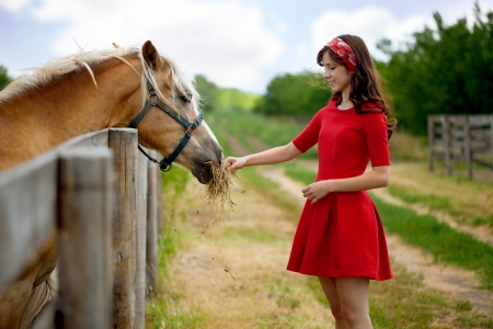 sundress:  Young cute woman feeding horse on farm Stock Photo