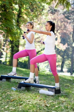 group of women on fitness class, outdoor Stock Photo - 16217448