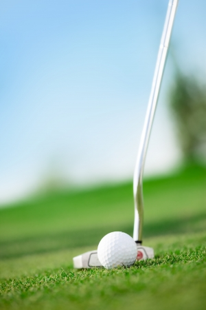 putting on: A golf club with golf ball on a golf course