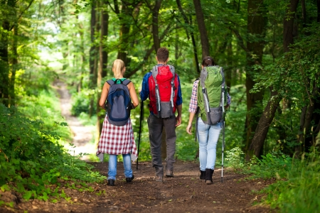 Hikers with backpacks, back view photo