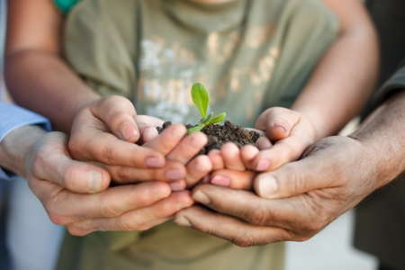 Different hands holding plant in soil photo