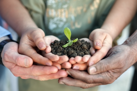 Conceptual closeup environment photo of hands holding a young plant photo