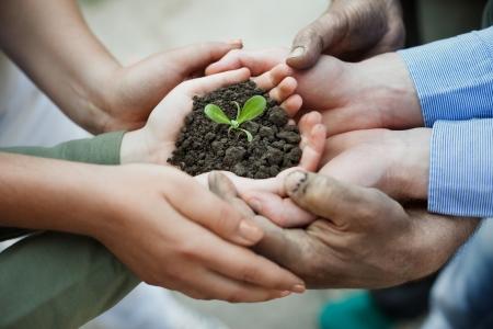 土壌中の新工場を保持カップ状の手
