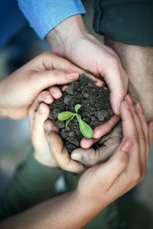 손은 우리의 환경을 보호하고, 새로운 모종을 둘러싸고