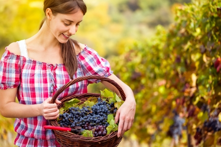 Young woman looking at basket full of red  grapes photo