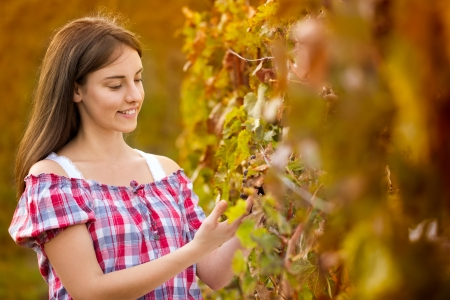 Young woman working  in vineyard photo