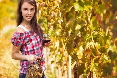 Vintner in the vineyard with glass of wine photo