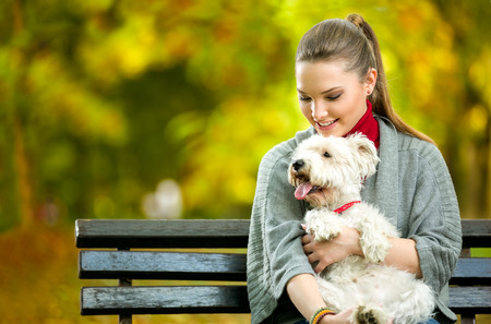 maltese dog: Young woman holding cute maltese dog,  outdoor in park