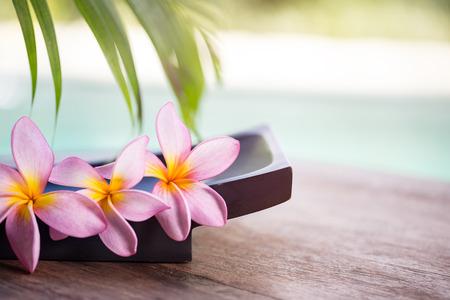 スパとウェルネスの背景, プルメリアの花を持つ熱帯環境