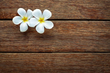 White frangipani on wooden background, spa background  with lot of copy space for text photo