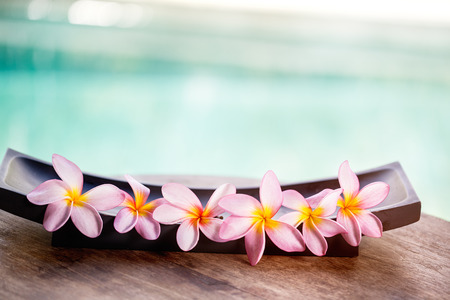 Tropical flower, spa background photo