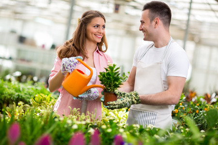 hothouse: Young workers water flowers in hothouse Stock Photo